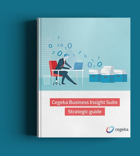 CBI Strategic Guide