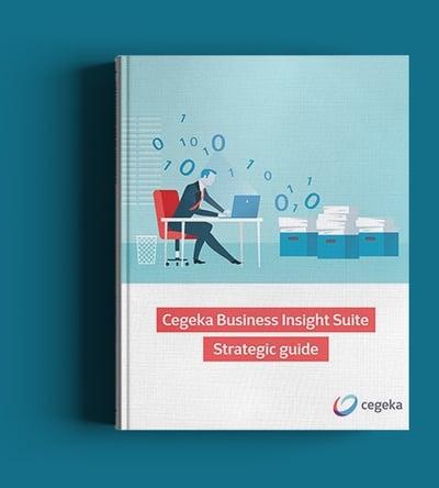 CBI Strategic Guide