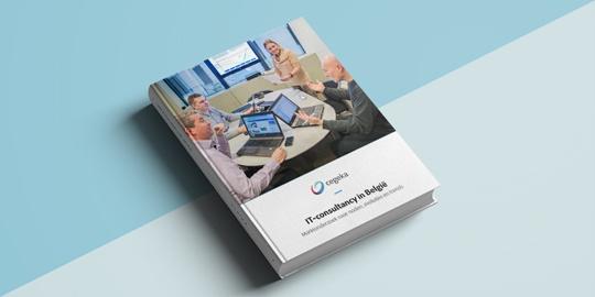 IT Consultancy ebook