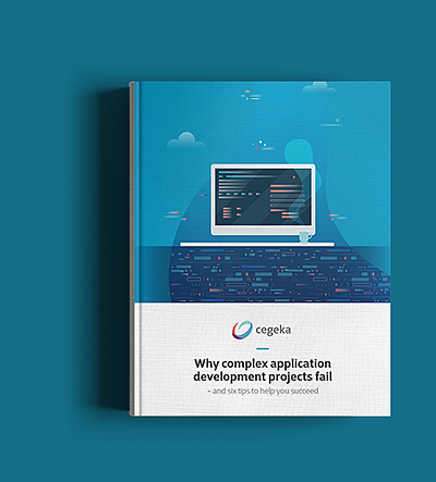 Software Development whitepaper