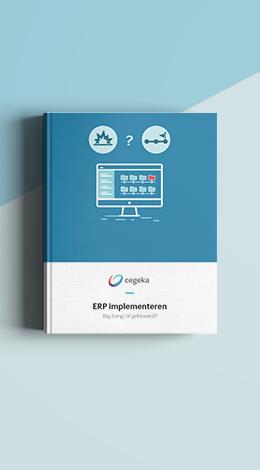 ERPImplementeren_Landingspagina_D.png