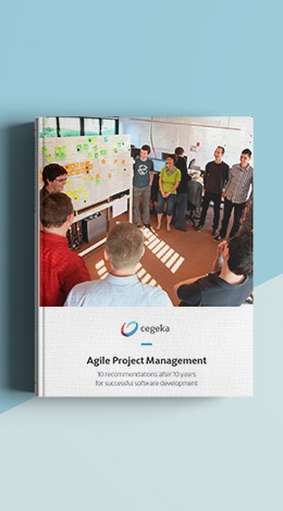 MockUpCover_Agile-Project-Management_ENG_2.jpg