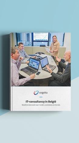 MockUpCover_IT-consultancy-in-Belgie_NL_2.jpg