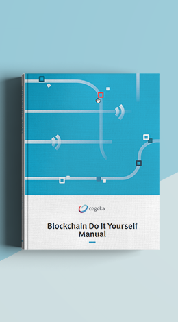 MockUpCover_blockchain-do-it-yourself_260x470.png