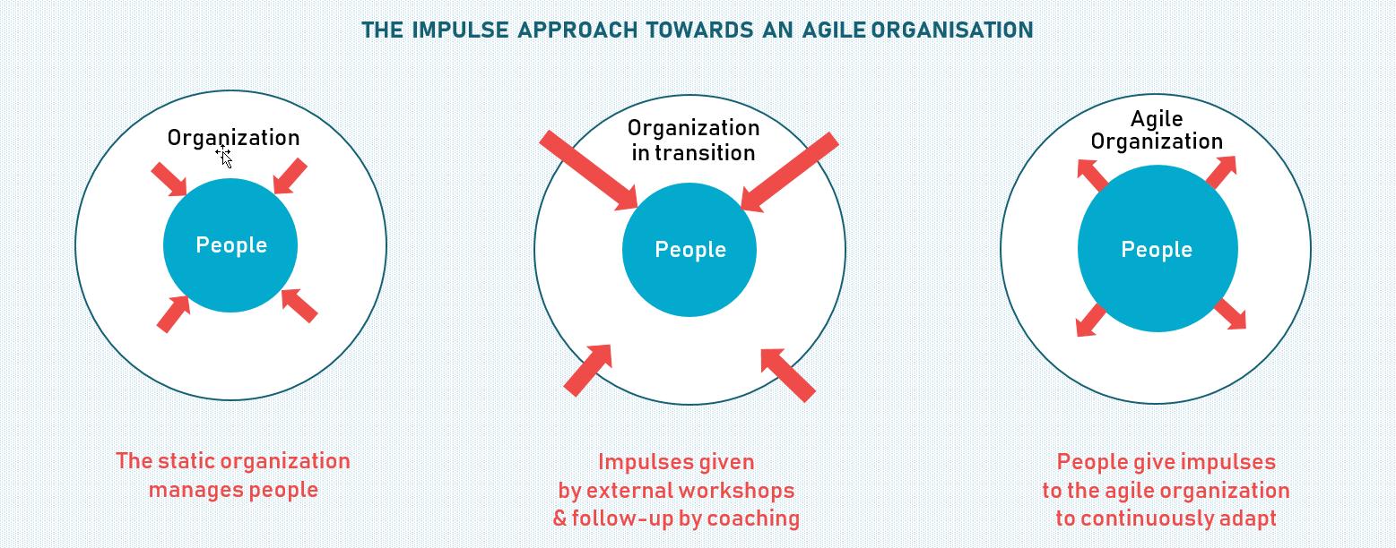 The impulse approach towards an agile organisation