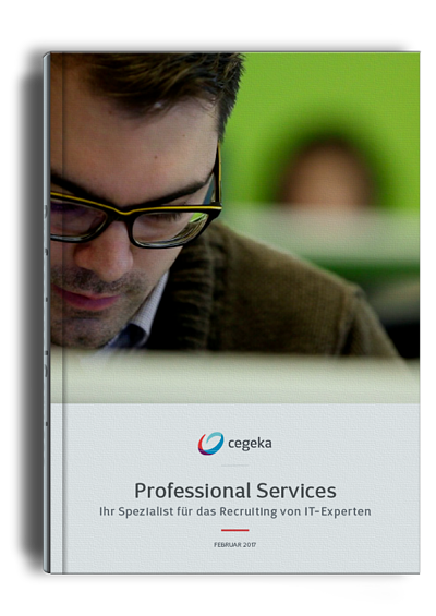 Professional Services E-Book