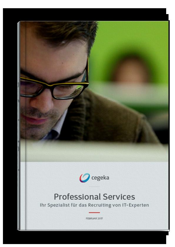 Cover E-Book Professional services