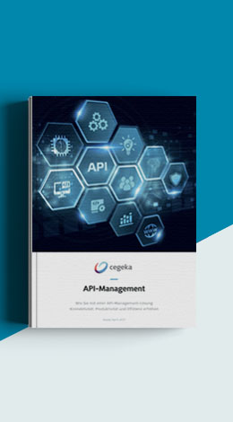 Cegeka Whitepaper API-Management
