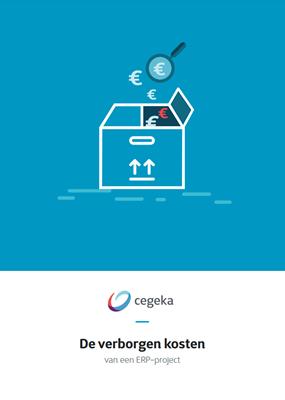ERP verborgen kosten