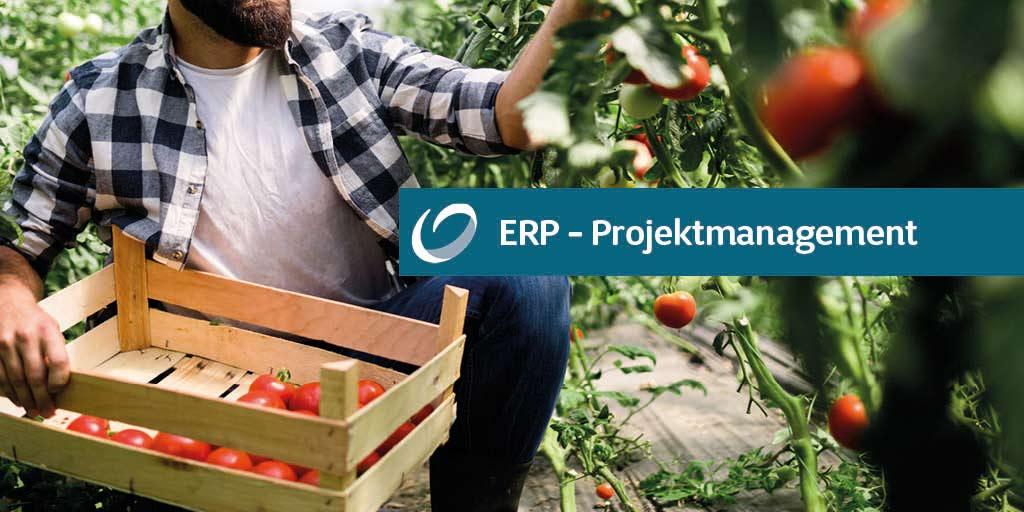 ERP-Projektmanagement: 3 Fragen an TRADIN ORGANIC