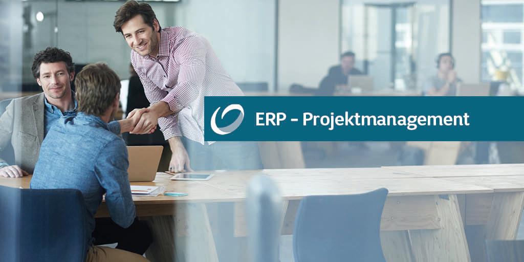 ERP-Projektmanagement: 3 Fragen an Wolfgang Theiner