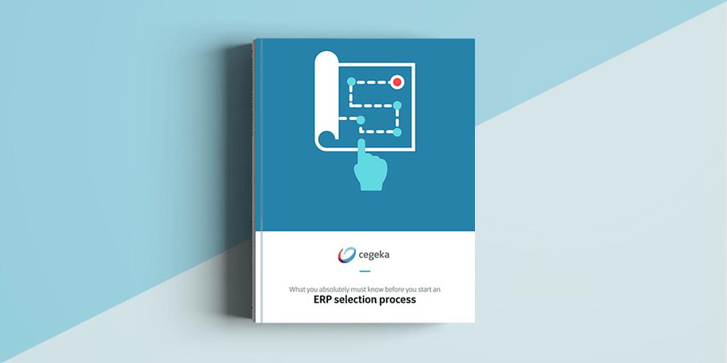 ERP selection process