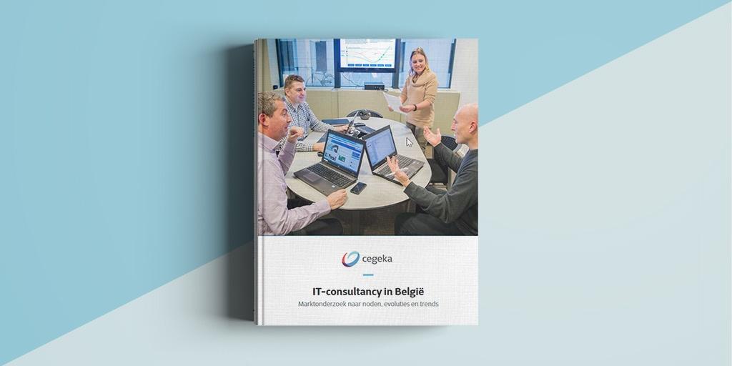 IT-consultancy in België