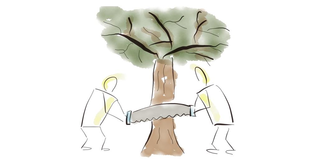 Teams im agilen Umfeld: Soft Skills und Gruppendynamik in neuen Teams