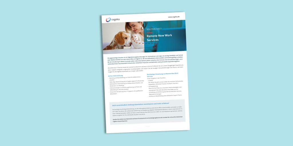 Solutionsheet:<br>Remote New Work Services (PDF)