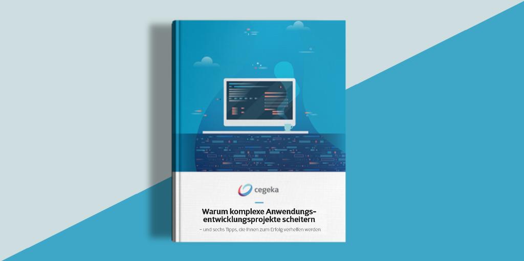 Whitepaper: Komplexe Anwendungsentwicklungsprojekte