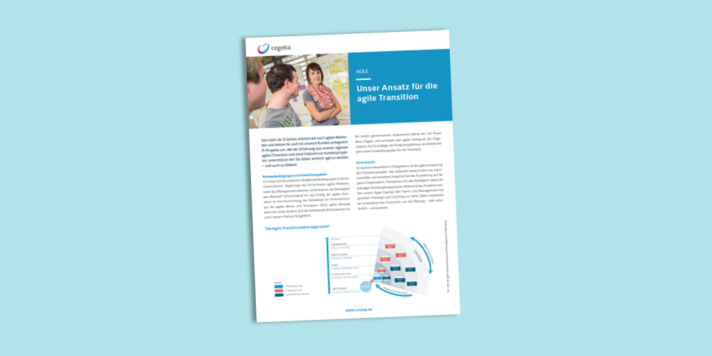Solutionsheet:<br>Agile Transition (PDF)