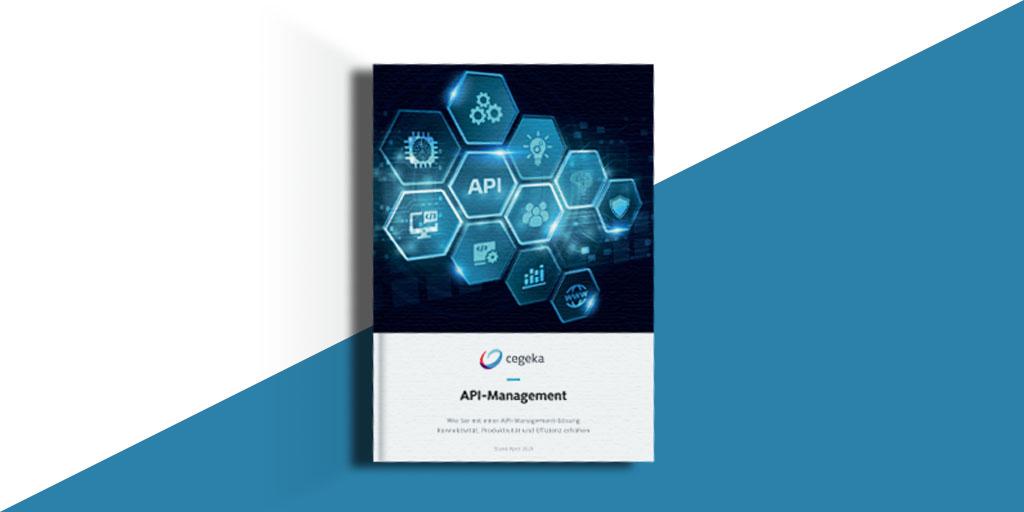 Vorschau Whitepaper API-Management