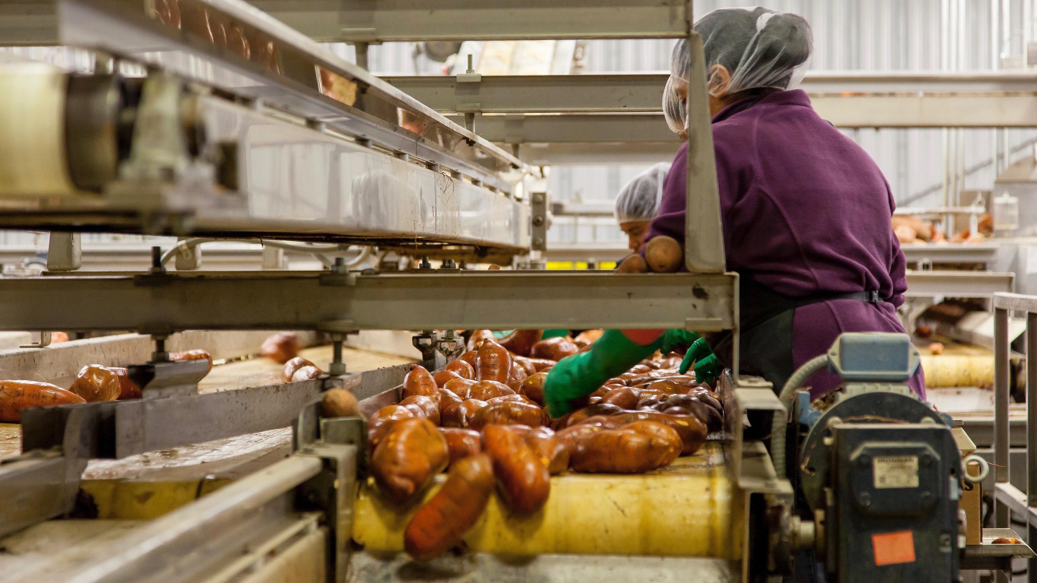 La pianificazione della produzione nel settore Food & Beverage