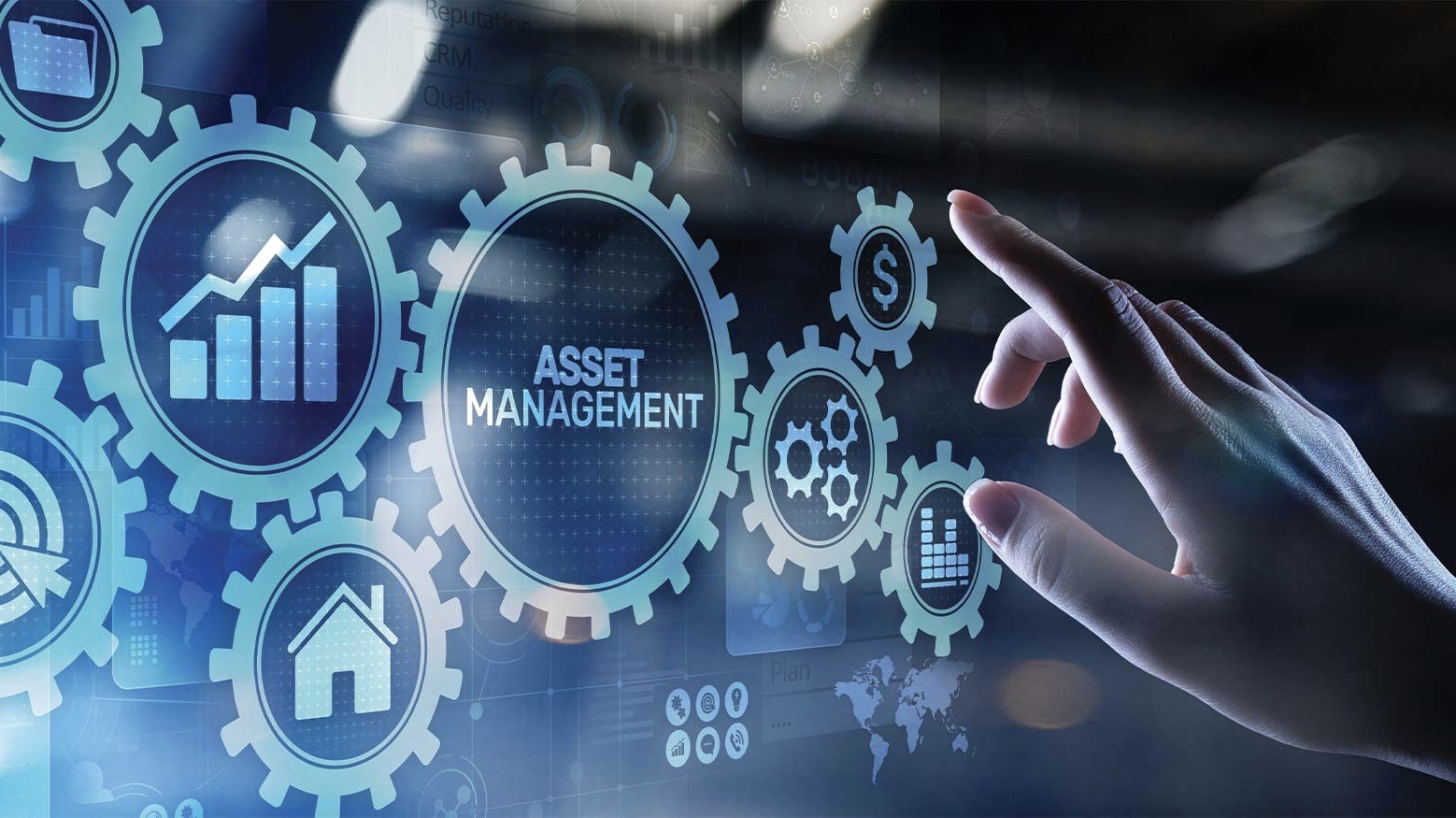 EVOLUZIONE IT: Asset Management