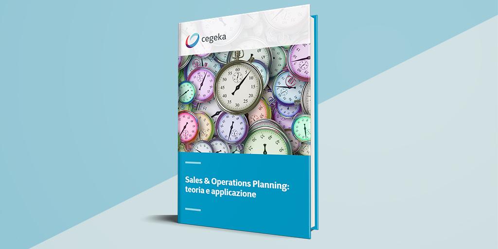 Sales & Operations Planning: teoria e applicazione