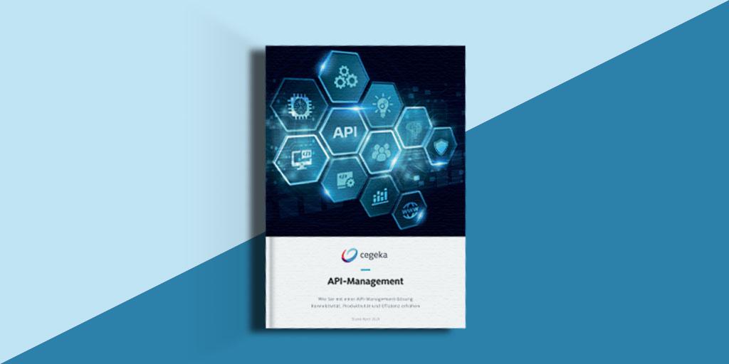 Whitepaper: API-Management