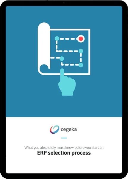 erp-selection-process